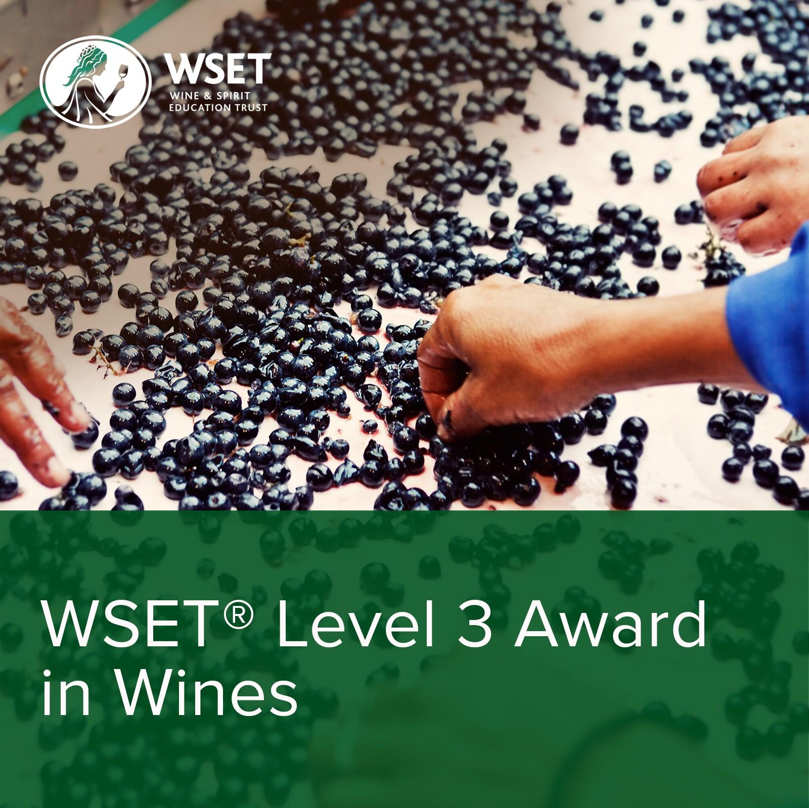 WSET Level 3 Award in Wines - Alexandre MA